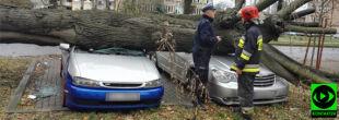 Powalone drzewa, przygniecione samochody. Wasze relacje z wichur